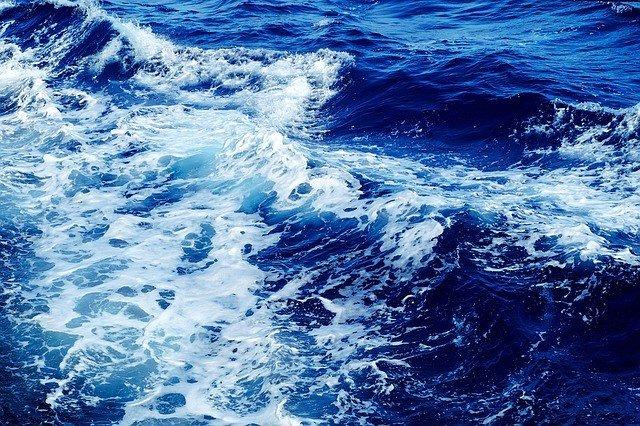 сонник-море