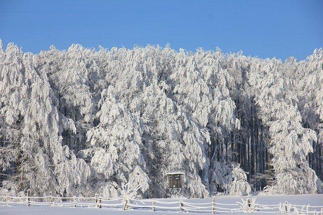 снится снег