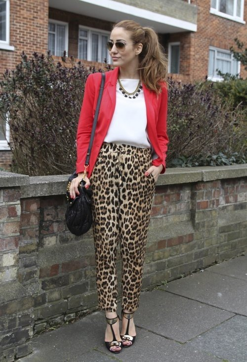 леопардовые брюки и красный пиджак