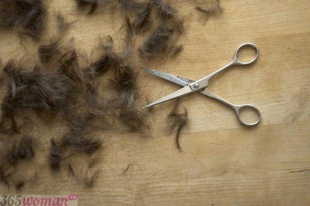 Лунный календарь стрижек волос на май 2018 года -  какие дни благоприятны для стрижки