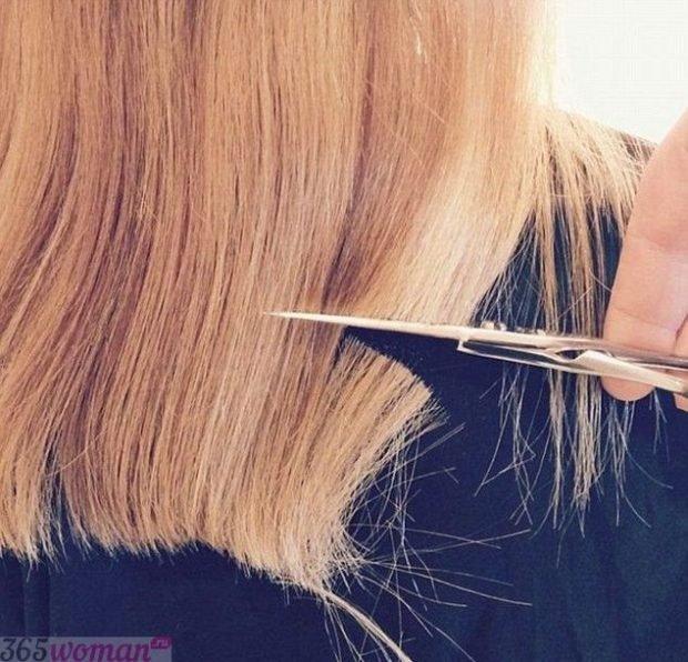 Лунный календарь стрижек волос на май 2018 года -  когда лучше стричь волосы в мае 2018