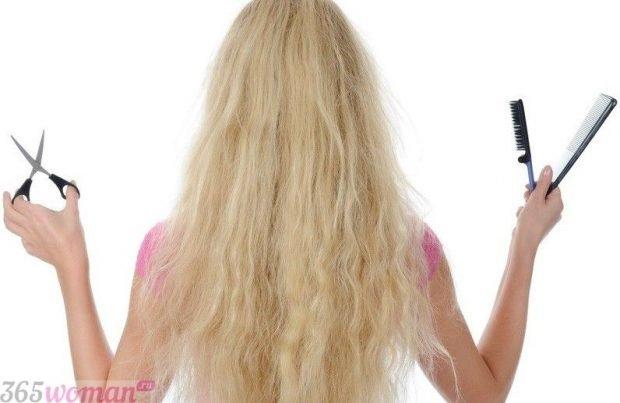 Лунный календарь стрижек волос на май 2018 года -  когда лучше посетить салон красоты